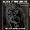 Alone in the Chaos: 0000025