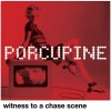 Porcupine: Witness to a Chase Scene – Repost