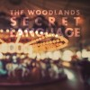 The Woodlands: Carousel