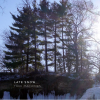 Tree Machines: Late Snow