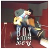 Streaming Lights: Box Room Boy