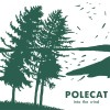 Polecat: In The Cold