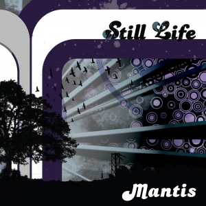 Mantis - Still Life