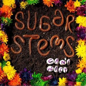 Sugar Stems