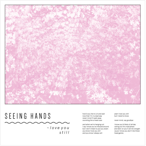 Seeing Hands